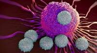 Decoded: How Chinese medicine kills cancercells