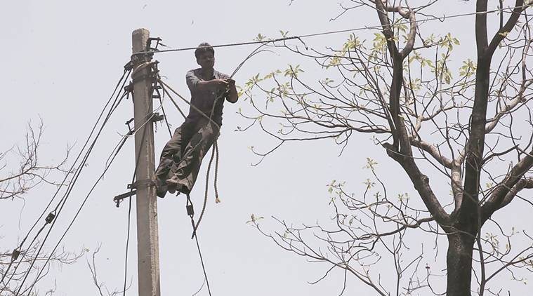 Chandigarh electricity department, line man, chandigarh electricity line man, chandigarh, chandigarh newsline, safety for electricians, indian express news