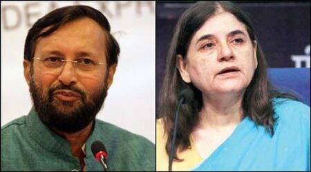 Maneka takes on Javadekar, third time in six months