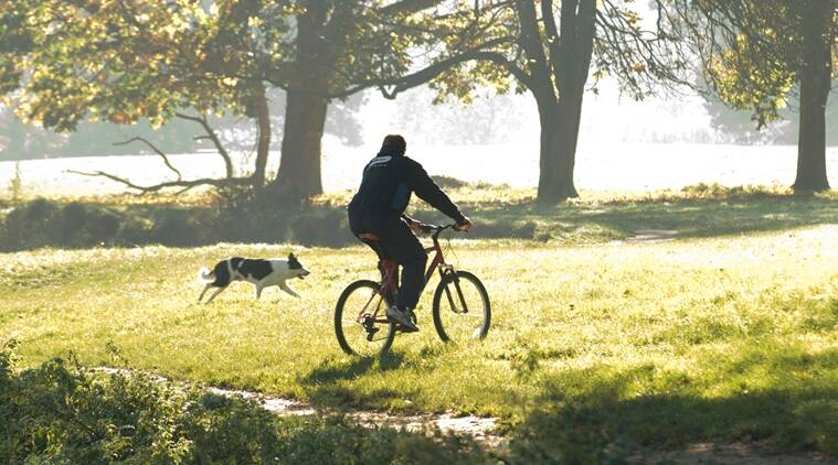 cycling, cycling for health, health benefits of cycling, cycling benefits, exercise and cycling, indian express, indian express news