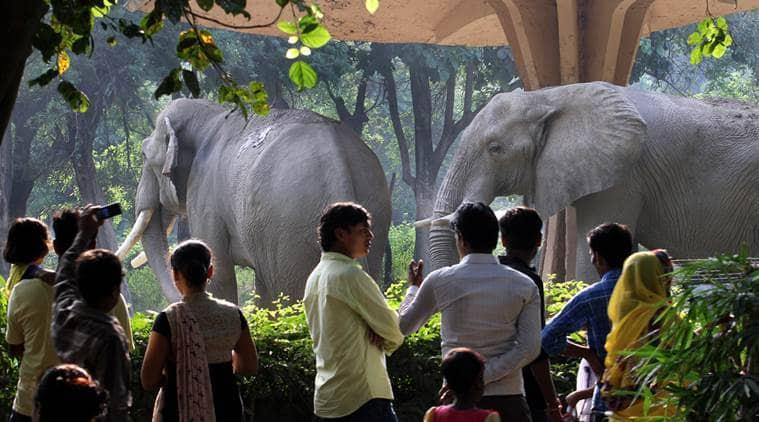 Delhi Zoo, Delhi zoo renovation, National Zoological Park, delhi zoo modification, delhi zoo revamp, delhi zoo upgrades, delhi news, ncr news,
