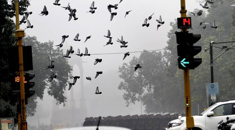 delhi, delhi weather, weather report, delhi weather report, new delhi weather, latest news, latest weather news, latest delhi news