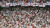 'We voted to leave': England fans celebrate Brexit in France