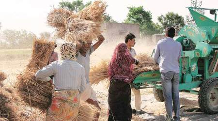 Eye on farmer unrest, govt sheds NDA-I's cautious line and hikes cropMSP