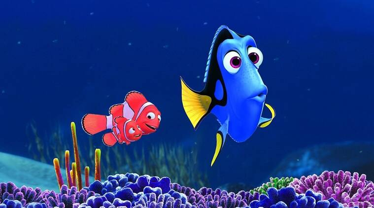 Finding Dory, Finding Dory movie review, Finding Dory review, Finding Dory film review, hollywood film review, Finding Dory hollywood review, Finding Dory movie, Finding Dory hollywood movie review, Entertainment