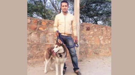 Siberian Husky kidnapped from Vasant Kunj