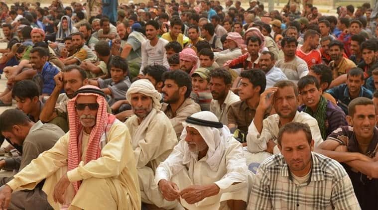 Haider al Abadi, iraq, falluja, islamic state, terrorism, isis, refugees, iraq refugees, falluja refugees, iraq military,  jihadists, world news, world terrorism