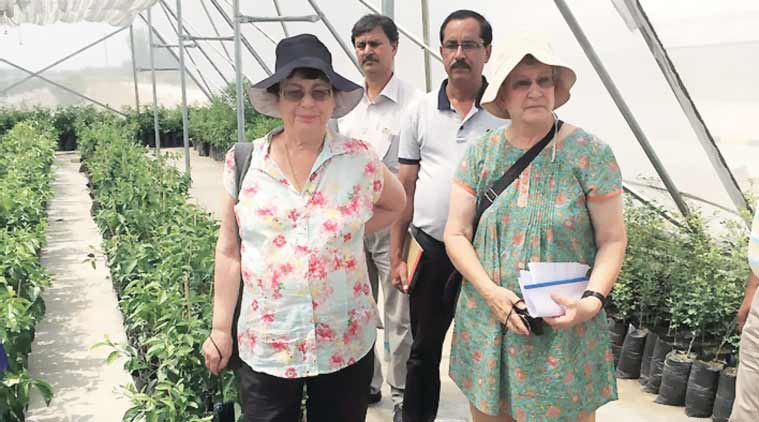 drip irrigation, fertigation, tissue culture, Indo-Israel Agricultural Project, India Israel relations, Indian farmers, india news