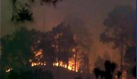Forest fire rages in forest near Jammu-Poonchhighway