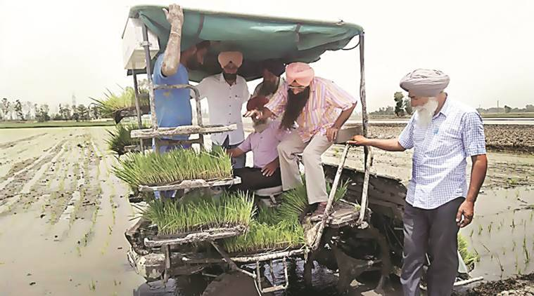 Paddy transplantation, Machine Paddy Transplantation, imported machines for farming, Machine farmers, Labour, agriculture development, India News