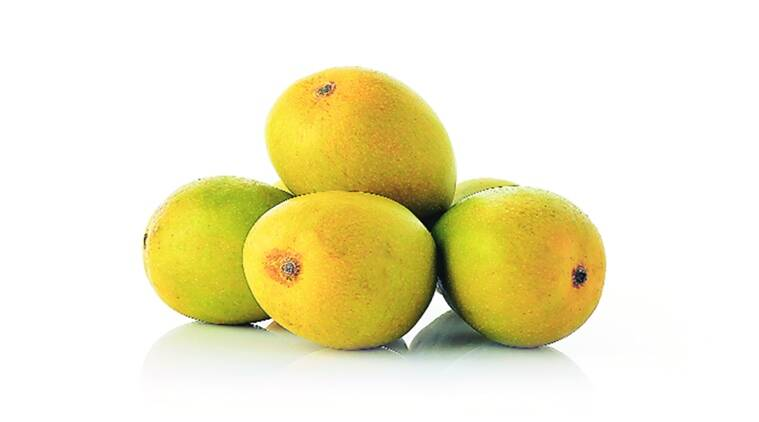Synonymous with the season, mangoes are an element of summer.