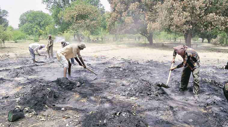 Mathura, Mathura violence, Mathura violence probe, Mathura probe, Mathura clashes, Mathura violence tress destroyed, Mathura trees, Environmentalists, Braj area, Mathura Braj area, Hema Malini, Mathura clashes probe, Mathura news, Uttar Pradesh news, India news
