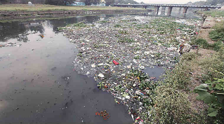Pune Municipal Corporation, PMC, Mula Mutha rivers, Mutha river, Mula river, Pune river pollution, Pune pollution, pollution, Pune river, Pune riverfront, Mula Mutha development, Pune news