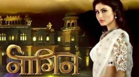 Naagin, Naagin TV summary, Naagin summary, naagin 17th October, naagin 17th Oct update, naagin written update, television, india television, entertainment news, indian express