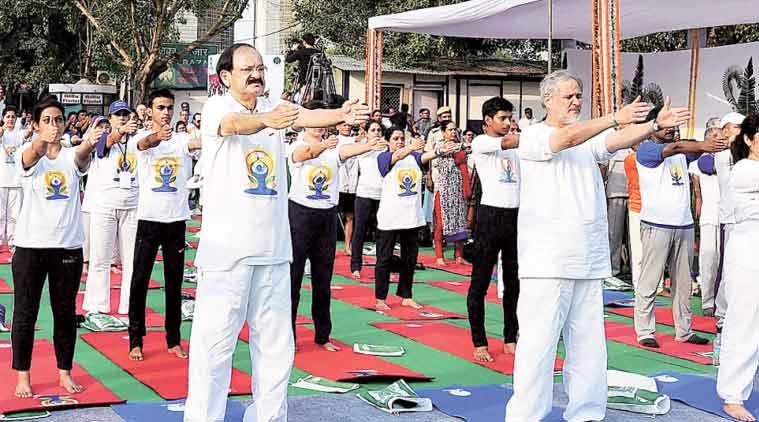 Venkaiah Naidu in Delhi. (Source: PTI)