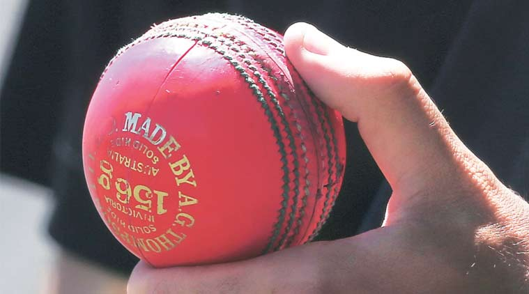 BCCI, BCCI news, india cricket, cricket india, india cricket team, day night test, india day night test, india vs new zealand, new zealand vs india, ind vs nz, india vs new zelaand day night test, india vs new zealand pink ball test, cricket news, cricket