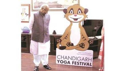 Stage set for Chandigarh Yoga festival: Yoga in 3D at Sukhna Lake