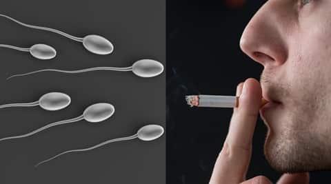 and sperm motility Smoking