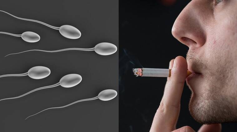 Smoking and sperm quality