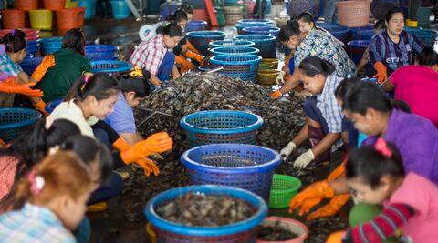 Vietnam business giant shows interest in seafood trade with Bengal