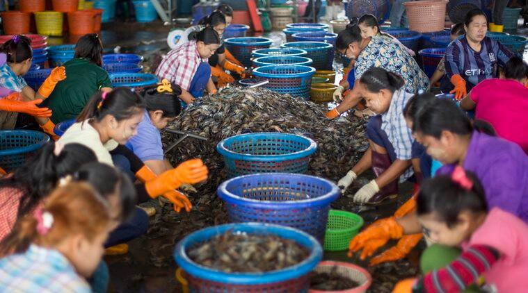 Thai Seafood industry, Cambodian villagers, lawsuit against US, villagers file lawsuit US, human trafficking in seafood industry, Thailand, United States, Walmart sea food, world news, Thailand news