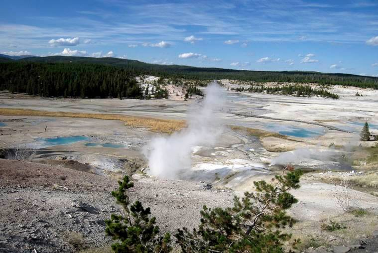 Yellowstone, Yellowstone national park, Yellowstone springs, Yellowstone hot springs, yellowstone incidents, yellowstone tourists, yellowstone hot water springs, Yellowstone USA, US news, World News