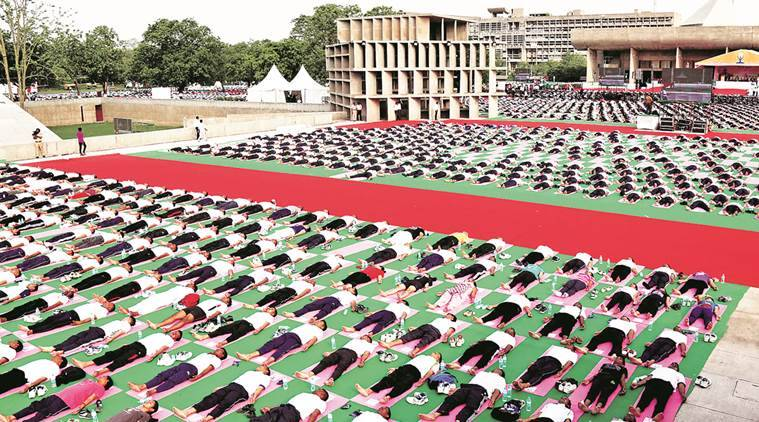 Participants performing Yoga during Full dress Rehearsal for International Day of Yoga at Capitol Complex in Chandigarh on Sunday, June 19 2016. Express Photo by Kamleshwar Singh
