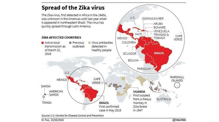 zika virus, zika, World Health Organization, WHO, who on zika, microcephaly zika, zika effects, zika neurological abnormalities, health news, zika virus africa, zika virus new york, effect of zika virus on babies, zika virus effects on infants