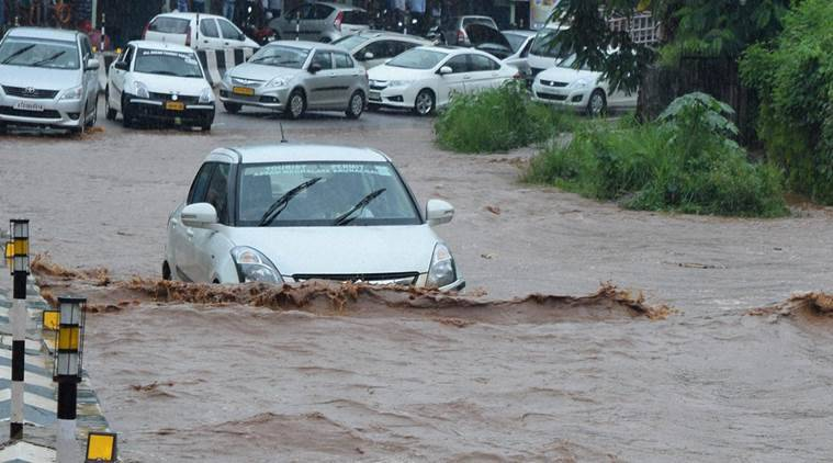assam, assam floods, kaziranga national park, india news