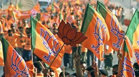 BJP executive meet: differencesexposed