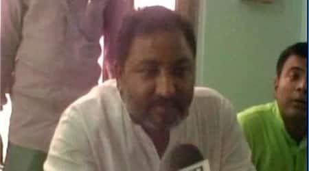 up bjp, dayashankar singh, up bjp vice president, dayashankar mayawati remark, bahujan samajwadi party, up bjp leader