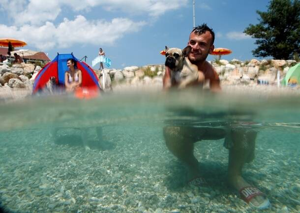 A man is pictured with his dog at the dog beach and bar in Crikvenica