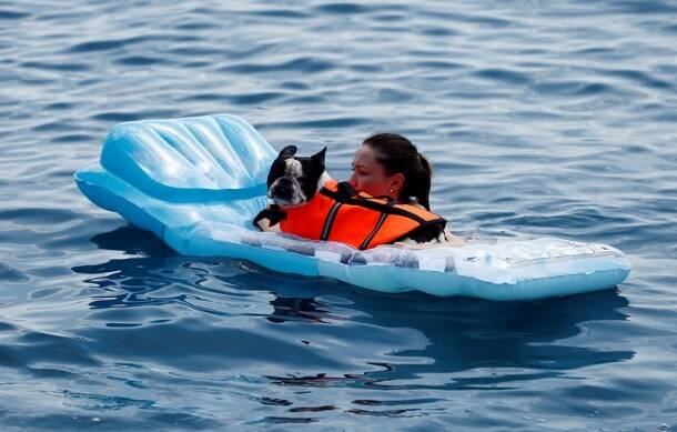 A women swims in the sea with his dog at dog beach and bar in Crikvenica