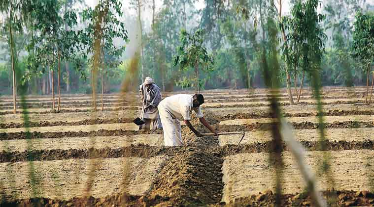 farmer, land acquisition, maharashtra, maharashtra land acquisition, govt farmer land acquisition deal, maharashtra irrigation project, maharashtra agriculture news, india news