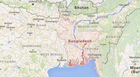Cattle smuggled from India harming economy of Bangladesh: BGB