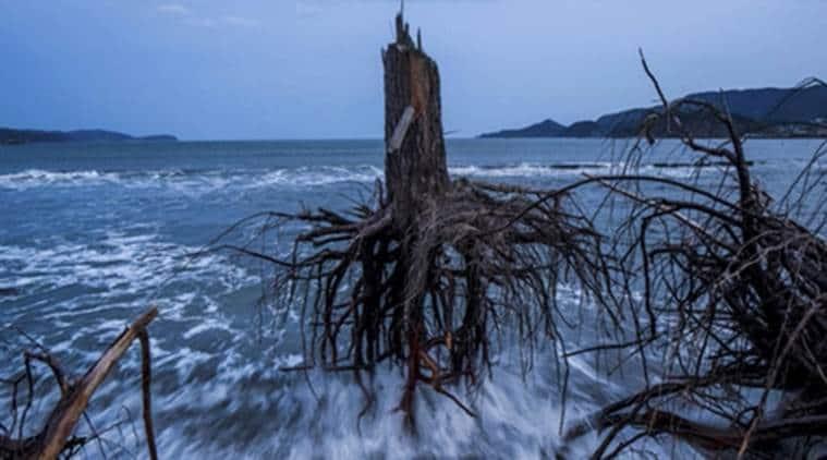 Japan, Japan disaster, floods in Japan, Japan disaster prevention techniques,  Tsunami prone area, Japan Tsunami prone area, tokyo, latest news, world news,