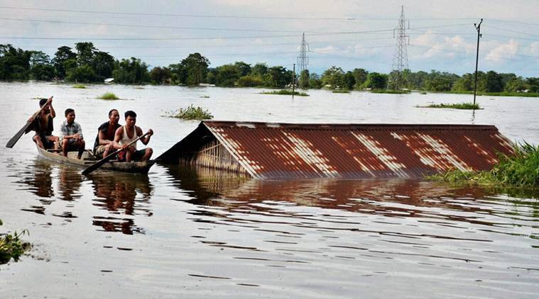 assam, assam floods, assam news, assam relief, assam flood relief, kaziranga, kaziranga rhinos, sonowal, sarbananda sonowal, bjp assam, india news