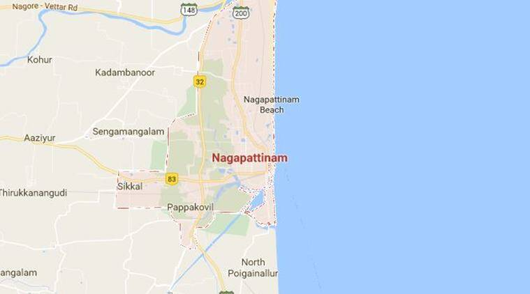 tamil nadu, tamil nadu news, Nagapattinam, Nagapattinam TN, Nagapattinam poaching, Nagapattinam storks poaching, storks poaching, asian open billed storks, sirkazhi forest, indian express, india news