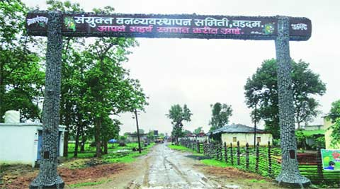 Gadchiroli village bags top award for forest conservation