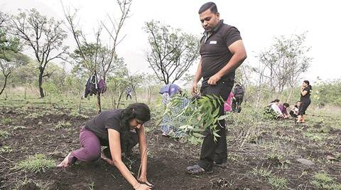 Pune municipal corporation, PMC, tree plantation, tree plantation pune, pune plant tree, latest news, latest pune news
