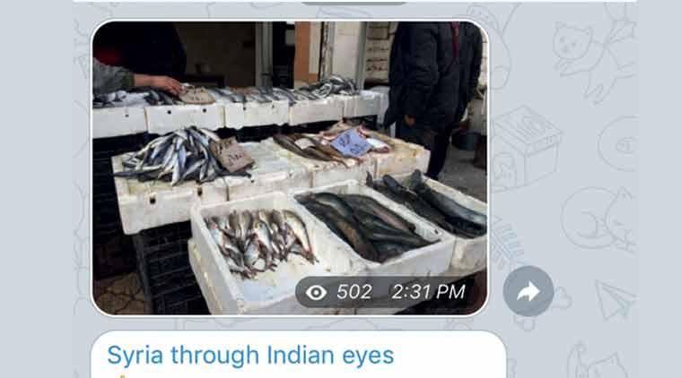 syria, indians in syria, syrian war, syria indians, india news, isis, islamic state, syria islamic state, syria news, india news