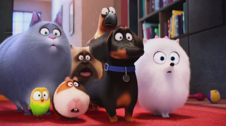 The Secret Life Of Pets movie review, The Secret Life Of Pets review, The Secret Life Of Pets film review, The Secret Life Of Pets, The Secret Life Of Pets movie, Hollywood movie review, movie review, review, movie review of The Secret Life Of Pets movie review, Entertainment