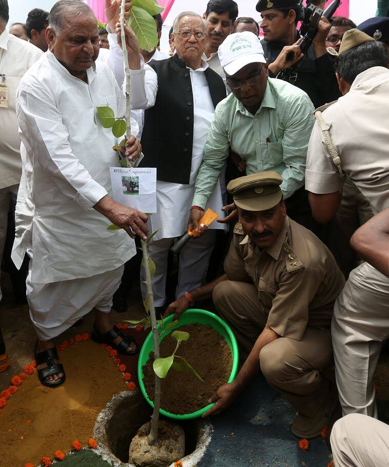 Mulayam Singh Yadav planting during a campaign drive organised by UP Government on Monday. (Source: Express photo by Vishal Srivastav)