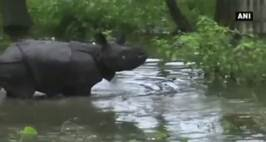 Assam flood situation worsens, Kaziranga Park Inundated
