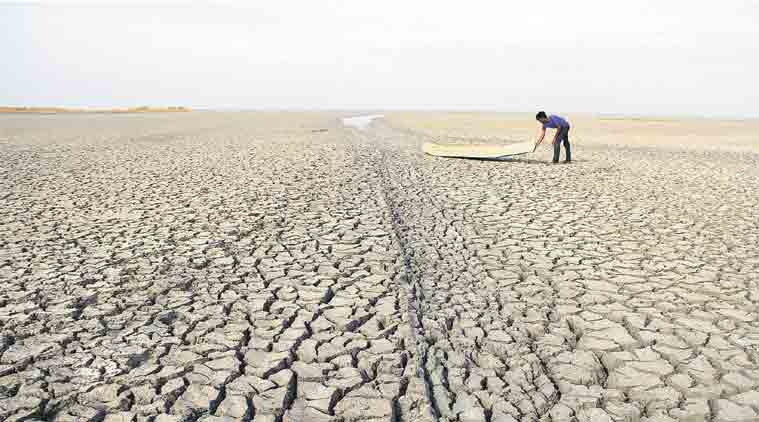 India farmers, farm policies, modi government, independence day, more crop per drop, farming in india, nda government, agriculture, farming, indian express