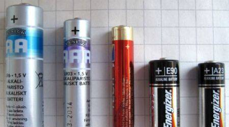 Lithium ion batteries, fungi, fungi, recycling batteries, Li-ion batteries, how to dispose Li-ion batteries, how to dispose lithium batteries, recycling cobalt, waste batteries, science, science news