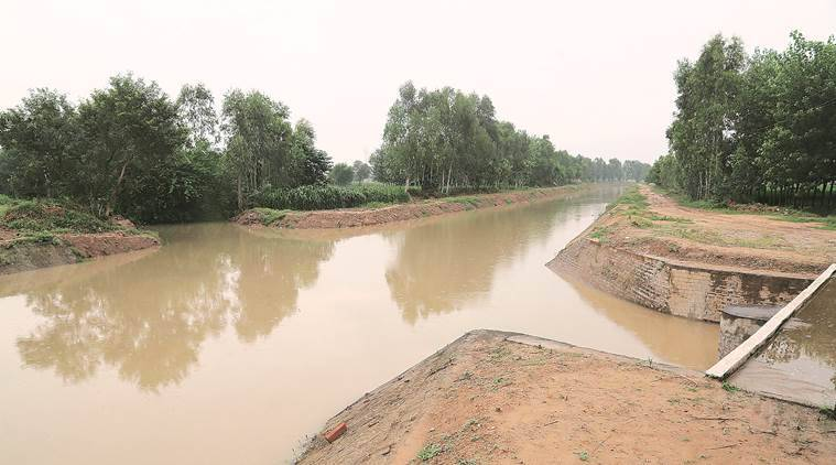 The Dadupur-Nalvi canal that feeds water to the river.