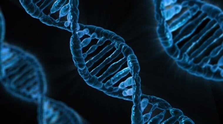 human dna, dna, radiation, high energy radiation dna, dna radiation, high radiation and human dna, low energy radiation, technology news, science news, india news, tata institute of fundamental research, research tata institute of fundamental research,