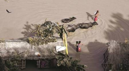 Assam floods: Majuli grapples with familiar erosion problem