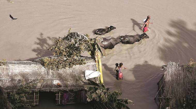 assam, assam flood, majuli flood, assam flood aftermath, assam flood casualities, houses destroyed, mauli erosion problem, assam repairing, samaguri village, brahmaputra reconstruction, fresh erosion, majuli fresh erosion, sarbananda sonowal, indian express news, assam flood updates, india news